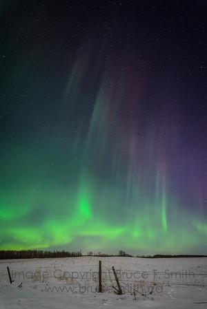 104 Aurora Borealis Colors