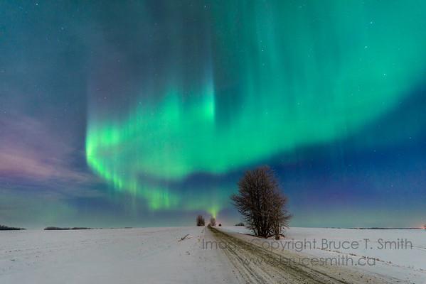 181 Moonlight Aurora Arch