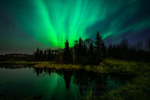 143 Spring Aurora