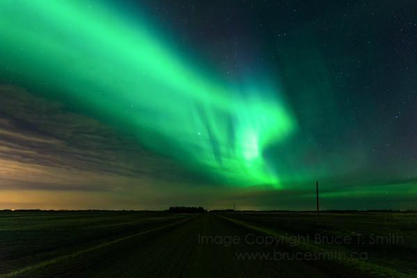 134 Big Green Swirl