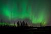 92 Aurora Silhouette
