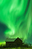 86 Green Fire