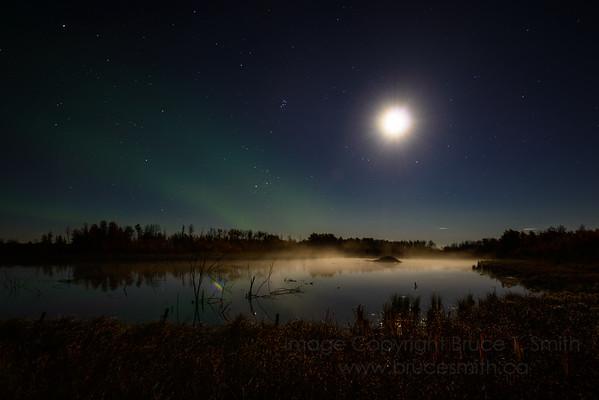 186 Moonlight Misty Aurora