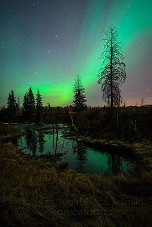 137 Spring Aurora Reflections