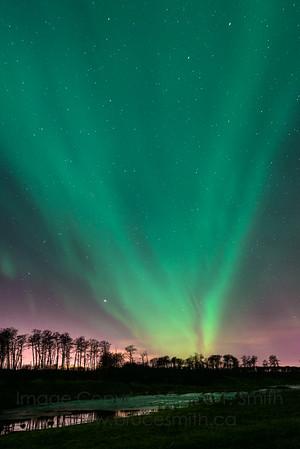 144 Aurora through the city glow