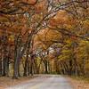 Ledges State Park 10-19-2014 003