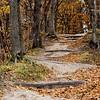 Ledges State Park 10-19-2014 025