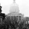 Iowa State Capital 8-29-15 010