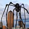 Downtown Des Moines 7-8-14 019