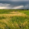 Neal Smith National Wildlife Refuge 6-26 182
