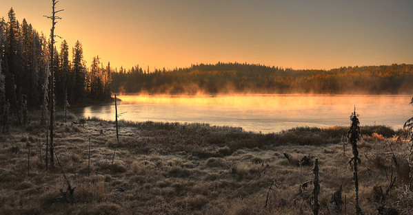 Morning mist and frost near Quesnel, BC
