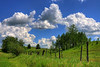 Sunny summer sky