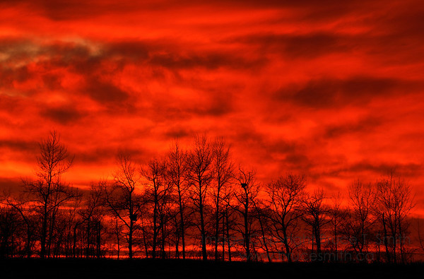 Incredible Red Sunset