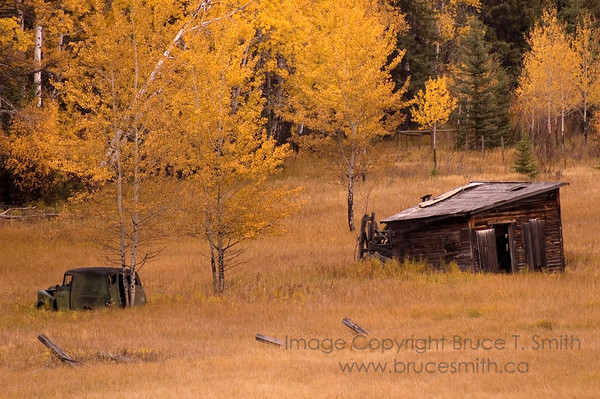 Abandoned Shed and Vehicle