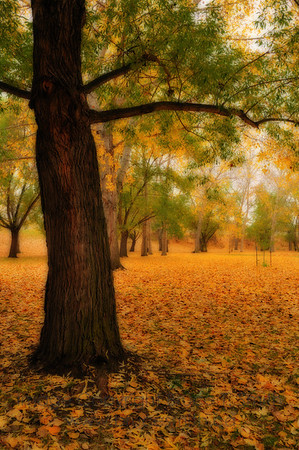 Impressionist Autumn Forest Scene