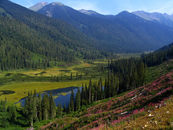 Beautiful wilderness mountain valley