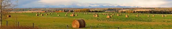 Amazing Alberta Fall Panorama