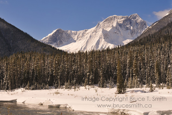 Early spring in the Rocky Mountains