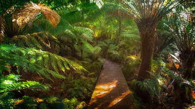 Walkway to Hopetoun falls