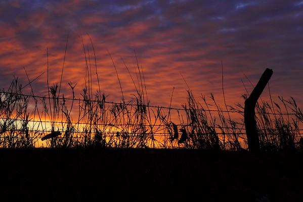 Neal Smith National Wildlife Refuge 01-18-2015 010