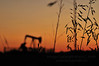 Sunset grainfield and oil pump jack silhouette
