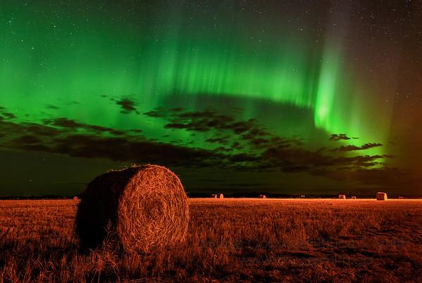 Aurora Borealis and farm field