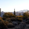 Arizona Mountain Range 2018 026
