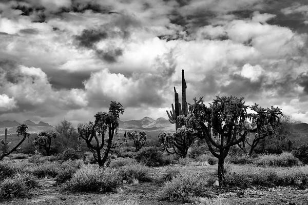 Arizona Mountain Range 2018 183