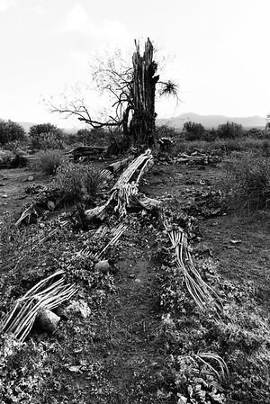 Arizona Mountain Range 2018 133