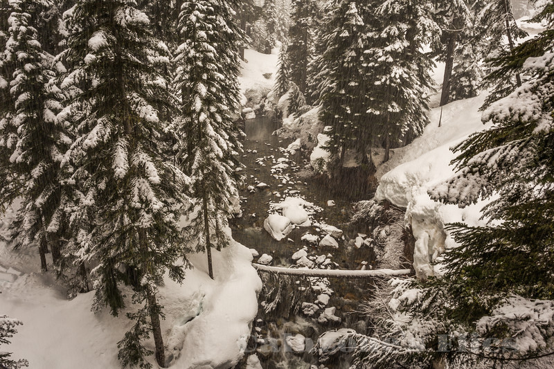 Alpental Creek
