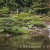 Japanese Garden- 3
