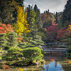 Japanese Garden- 2