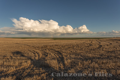 Wheat Country - Ritzville
