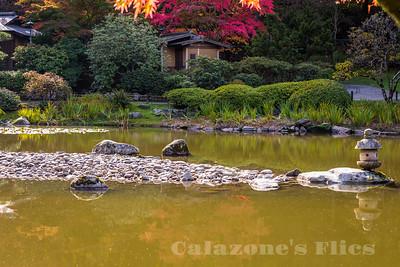 Japanese Garden-2