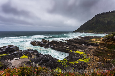 Cape Perpetua Scenic Area- 2