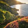 Irelands Coasts