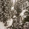 Alpental Creek- 2