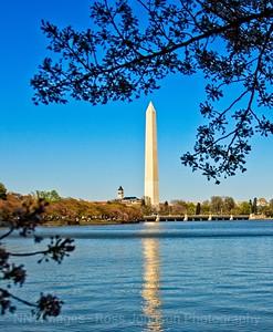 Washington DC - 04122009_6919Mod