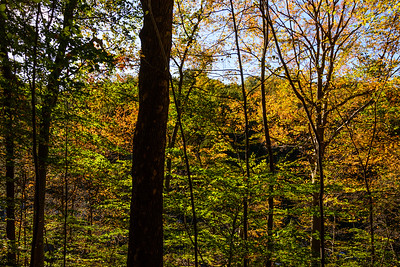 Autumn Colors of the Wissahickon Valley