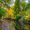 Autumn Colors of the Bronx River