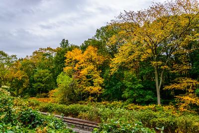 Trackside Autumn Colors