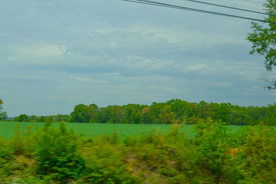 Green Trackside Fields