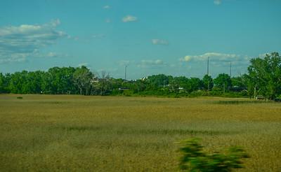 Penhorn Marsh