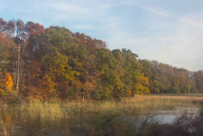 Autumn Colors viewed from a Southbound Metro North train
