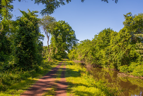 Morning Canal Trail