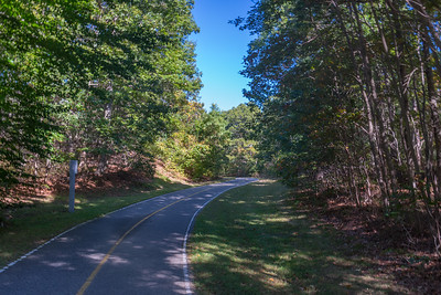 Secluded Bikeway