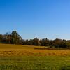 Open Burg Field