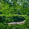 Bronx River in Scarsdale