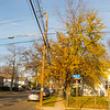 Autumn Colors of Hackensack