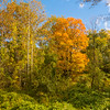 Autumn Colors of Northern Westchester